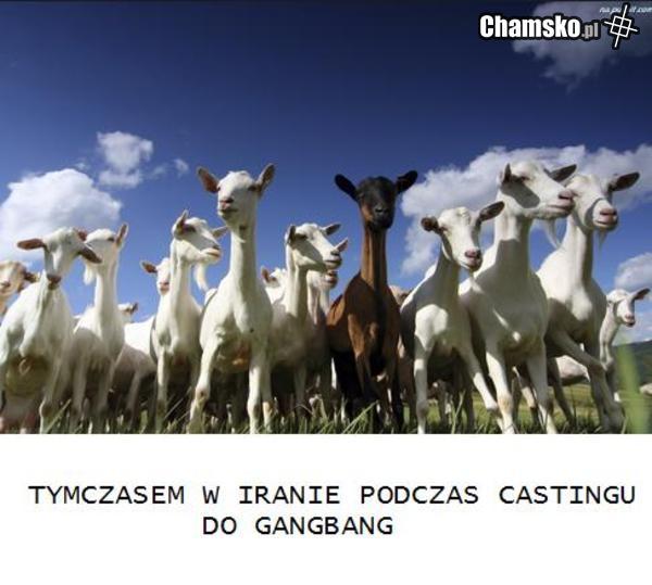 Irański casting na gangbang