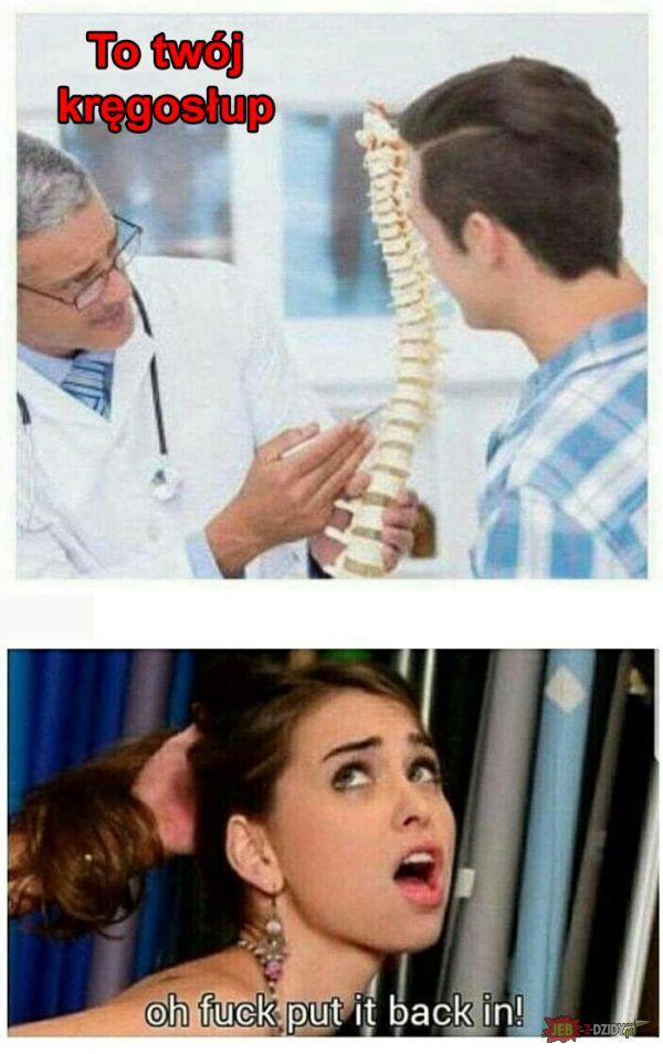 To twój kręgosłup