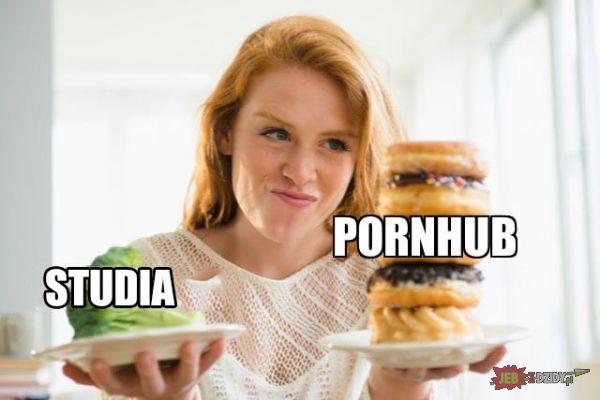 Studia vs Pornhub