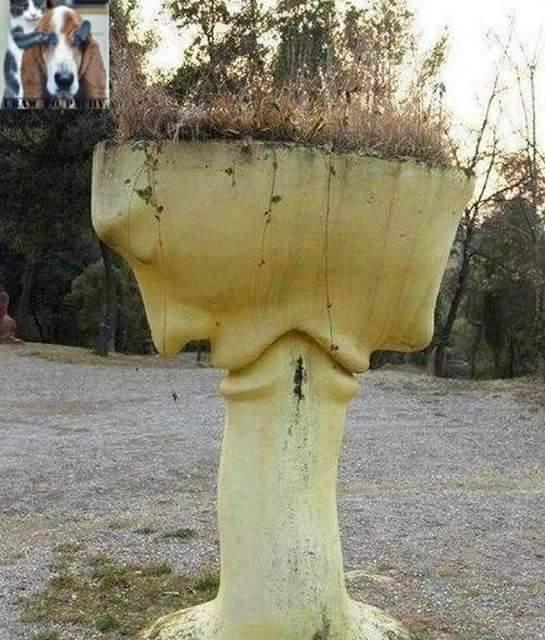 Chujowy wazon