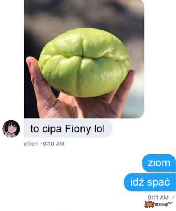 Cipa Fiony