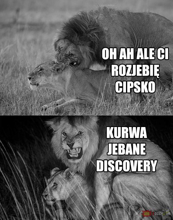 Jebane discovery