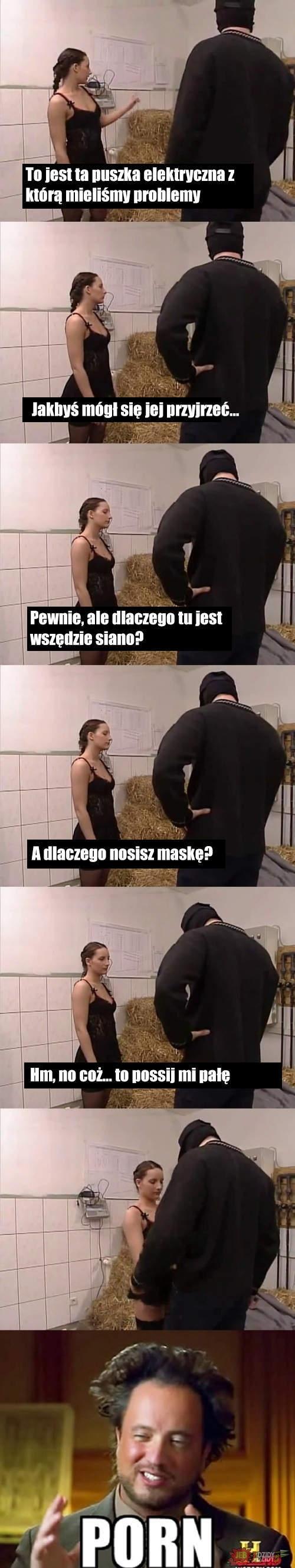 Dialogi w porno